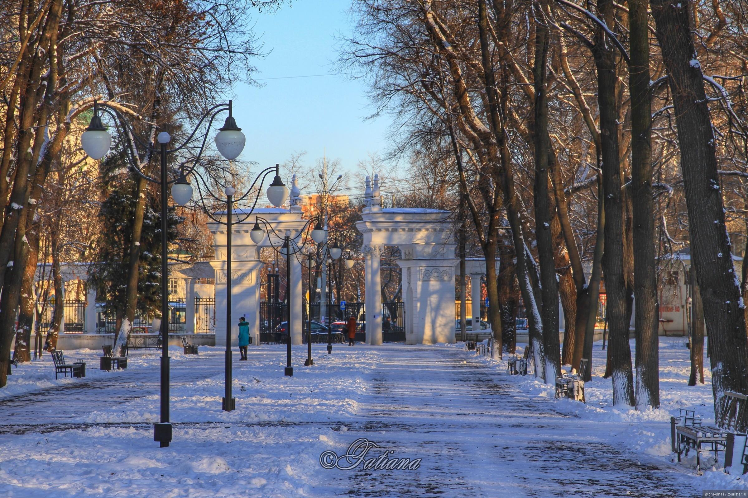 Новогоднее волшебство Воронежа и хранители тайн заповедного леса
